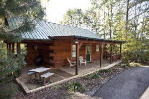 Bear Lodge (8)