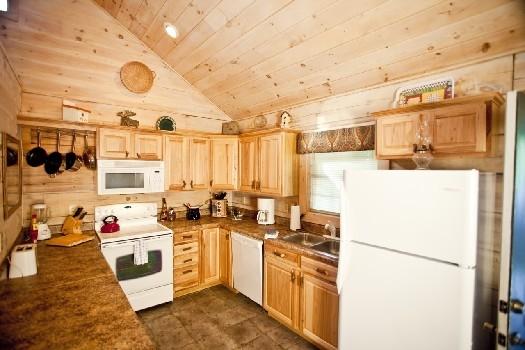 Bear_Kitchen